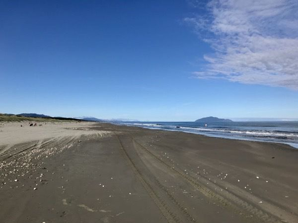 Morning at the beach, looking towards Kāpiti island, a person swimming.